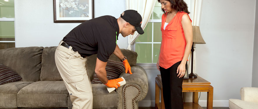 Shakopee, MN carpet upholstery cleaning